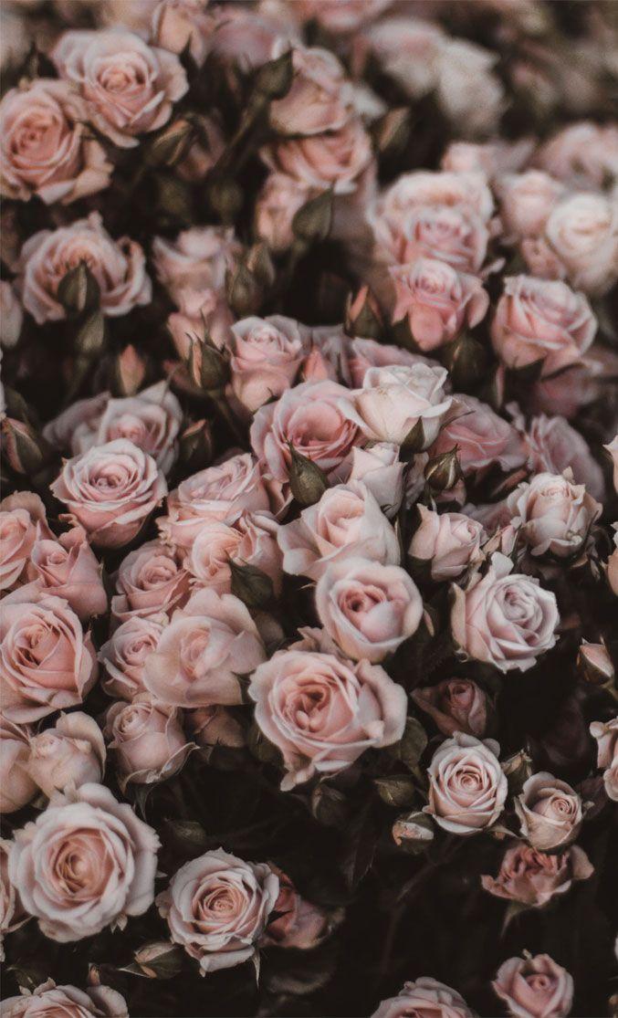 10 Beautiful Big Bunch Of Flowers For Phone Cvetochnye Fony Vintazhnye Predposylki Lesnye Oboi