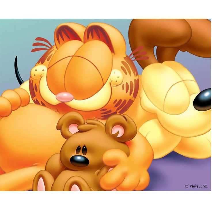 954 Best Images About Garfield On Pinterest Its The