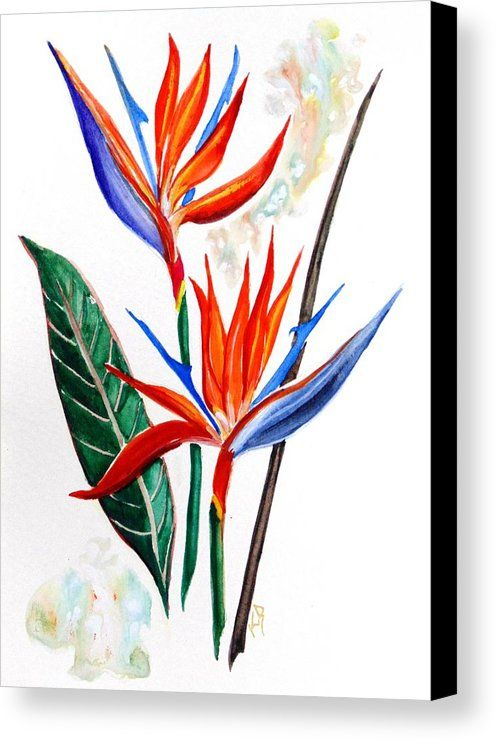 Canal Lily   Canvas Print by Karin  Dawn Kelshall- Best.  All canvas prints are professionally printed, assembled, and shipped within 3 - 4 business days and delivered ready-to-hang on your wall. Choose from multiple print sizes, border colors, and canvas materials.
