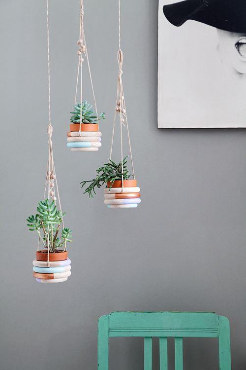Andrea von We like Mondays hat sich eine simple, aber superschöne Pflanzenampel für Sukkulenten ausgedacht.