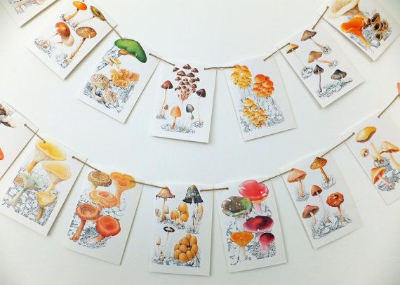 Fabulous Fungi bunting is wonderful for bringing an autumnal feeling into your home or for fall wedding decor! A fabulous thoughtful gift for