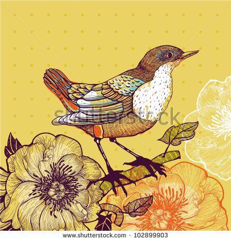 Bird ilustracji stockowych i animacji   Shutterstock