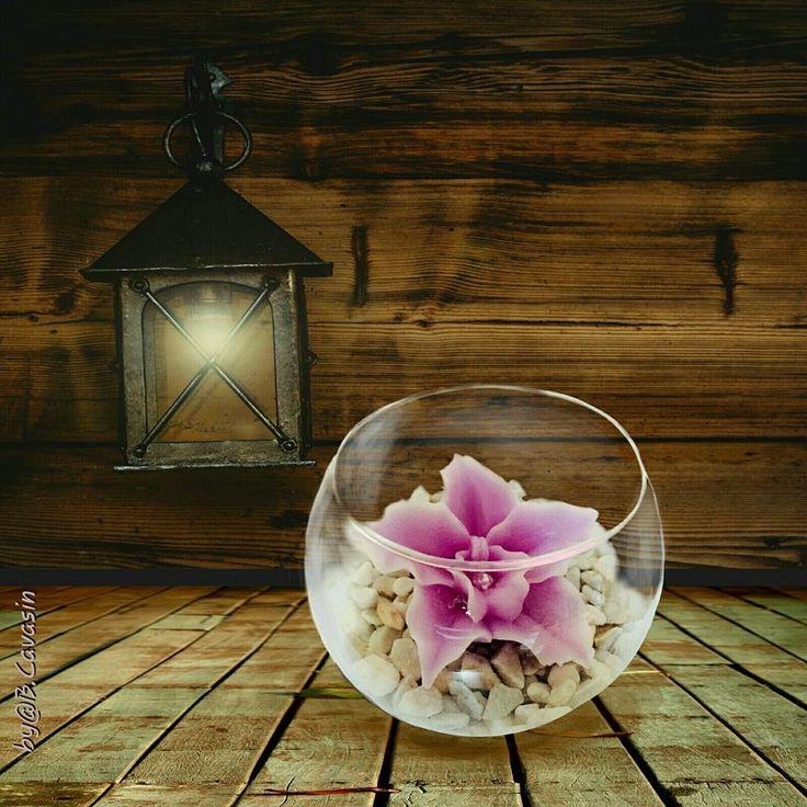 """""""Esistono 2 modi di diffusione della luce:essare la candela o lo specchio che la riflette"""" Edith Wharton """"There are 2 ways of spreading light: to be the candle or the mirror that reflects it"""" Edith Wharton  Boccia di vetro con orchidea disponibile su/Glass with orchid available on: http://monterosawicks-store.com/candele/candele-artistiche-decorate-mano/boccia-vetro-con-orchidea-p-211.html"""