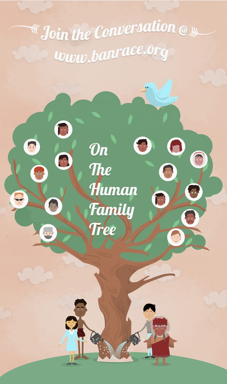 On The Human Family Tree | AnimationB2B