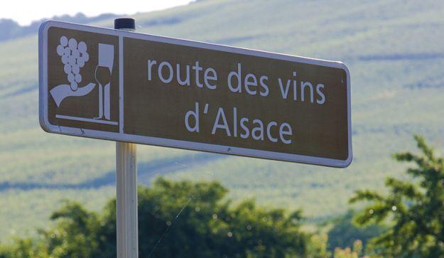 Route des Vins Alsace. En 170 km lang rute der fører gennem franksk landidyl og de mange vinproducenter i Alsace. Ikke en del af et netværk. Målgruppe: US, DGL og Guldh. Vurdering: 2/5.