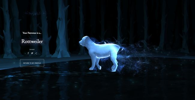 rotweiller patronus | We've Got Feelings About This New Pottermore Patronus Quiz | The Mary ...