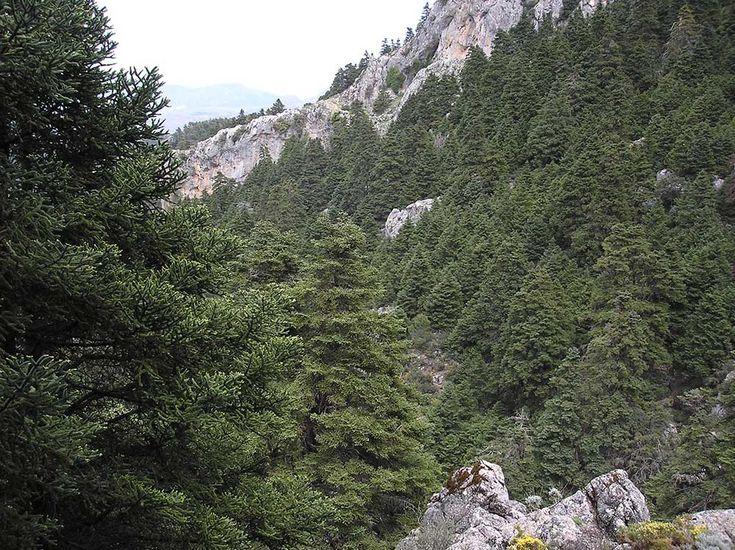 Se convertirá en el 16º Parque Nacional de la Red española, con la máxima protección ambiental de nuestro país, y su conservación será interés general del Estado.Cuenta con una superficie de casi 23.000 hectáreas y constituirá un importante activo de conservación y desarrollo sostenible para los municipios de la zona, que han impulsado la declaración.