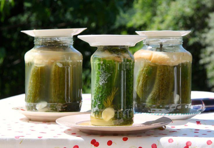 pickled cucumber