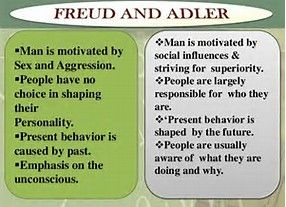 Image result for alfred adler birth order theory