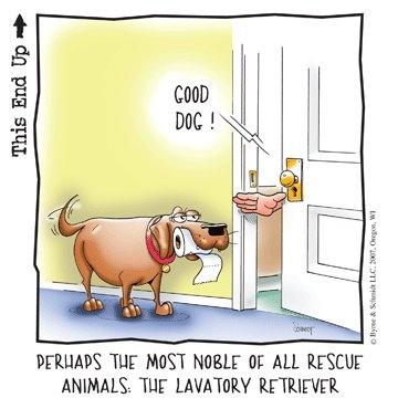 Lavatory Retriever (and other funny dog cartoons).
