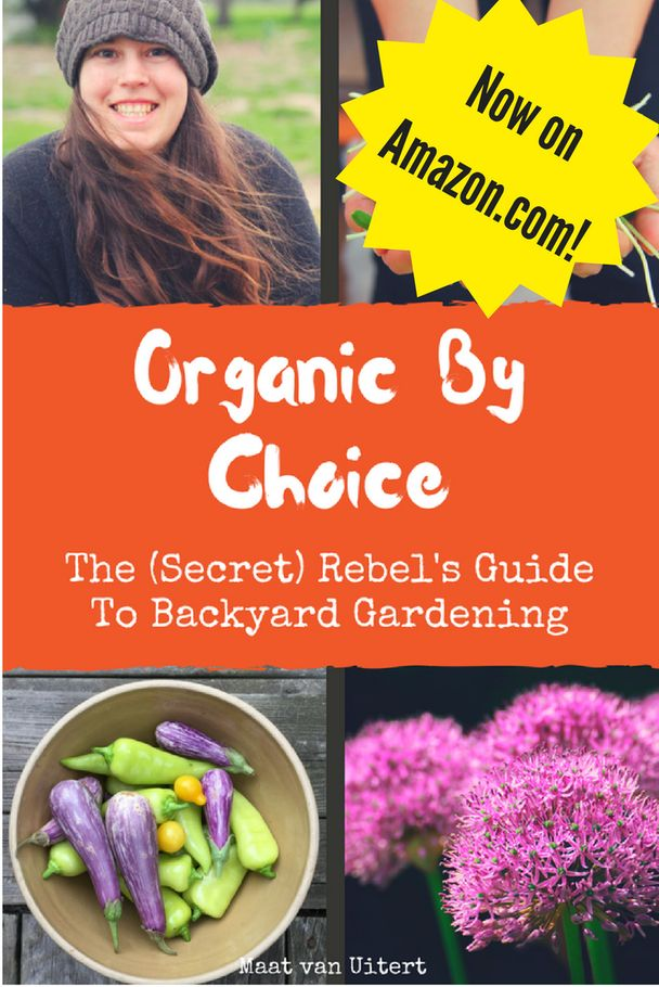 I've compiled a list of homesteadingresources and articles to help you out.  Where to buy essential oils  Chickens What to Feed your Chickens for Better Tasting Eggs  5 Chi…