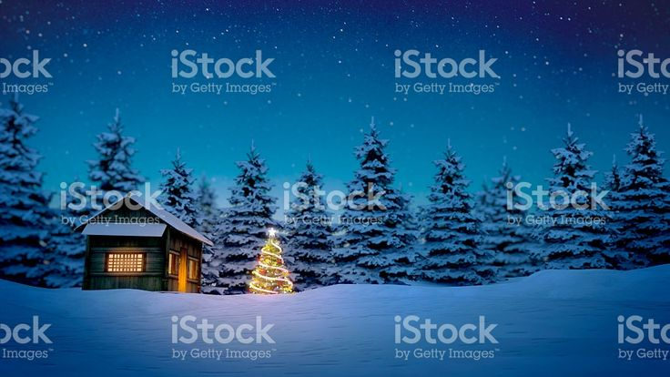 wooden cabin and christmas tree royalty-free stock photo