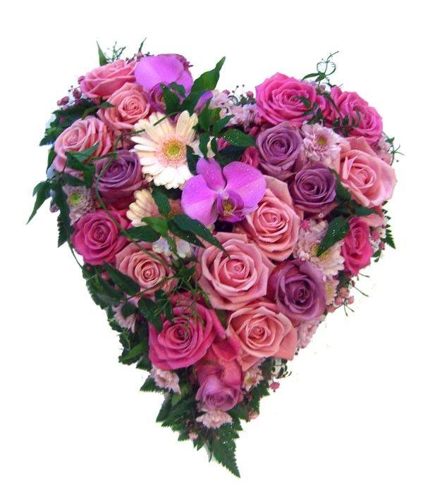 rosa og lilla begravelse hjerte
