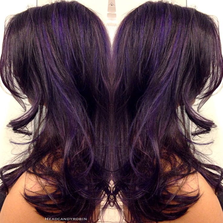 Hair color purple highlights images hair extension hair black hair color with purple highlights the best hair color 2017 best 25 plum highlights ideas pmusecretfo Images
