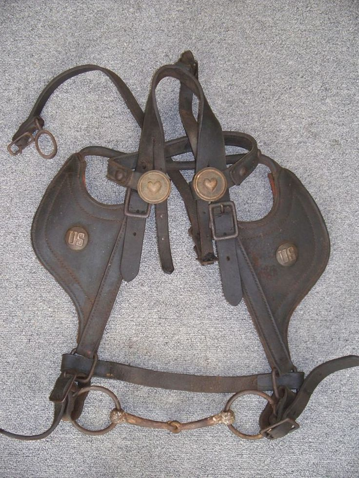 Civil War Era Horse Bridle With Heart And Us Rosettes Bit