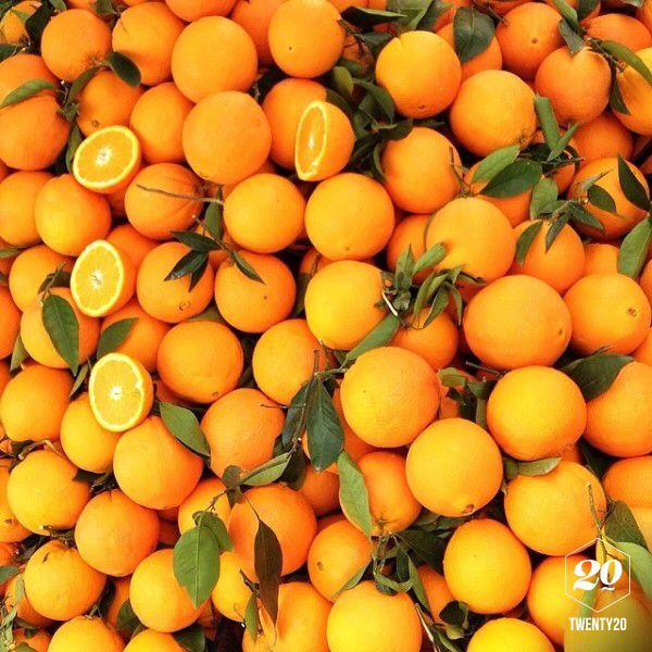 Fresh oranges in the public market in Torre del Mar, Andalusia, Spain - these were such a treat on a wonderfully warm spring day. Our trip to Malaga.  @twenty20app