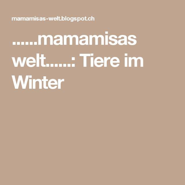 ......mamamisas welt......: Tiere im Winter