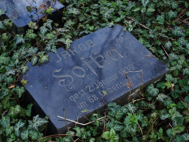 Opuštěný německý hřbitov v Jiřicích u Miroslavi