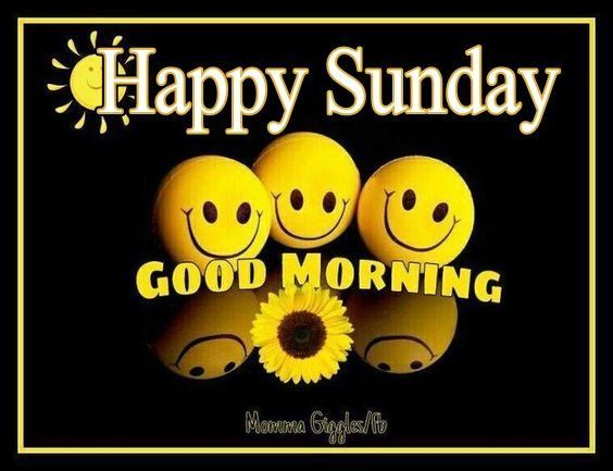 Good Morning And Happy Sunday Text : Best images about good morning on pinterest