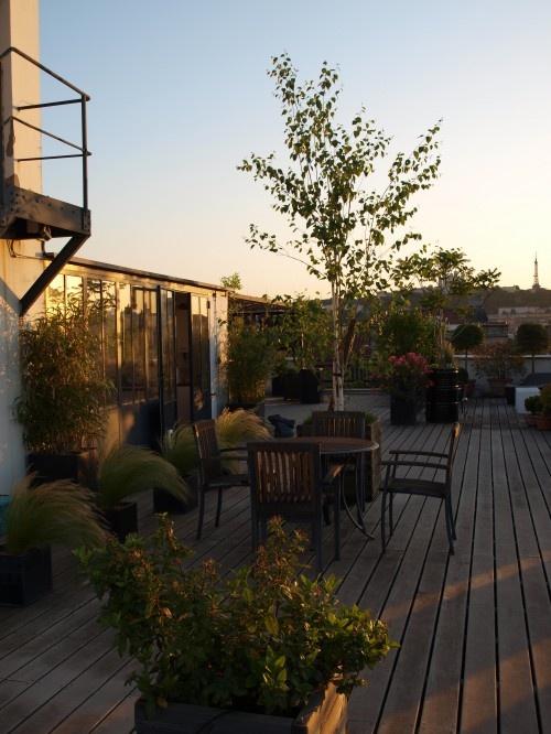 Nicholas's Rooftop Garden in Lyon, FR