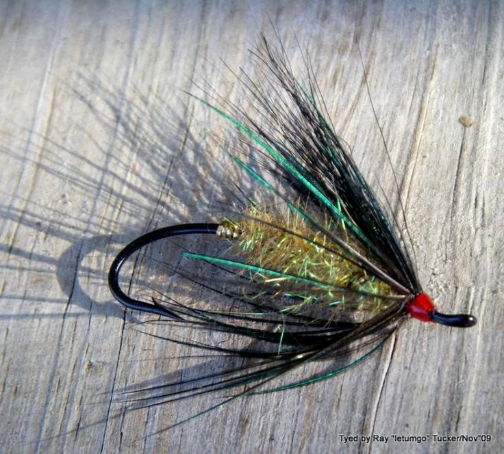 1000 images about trout flies on pinterest fly for Ice fishing flies
