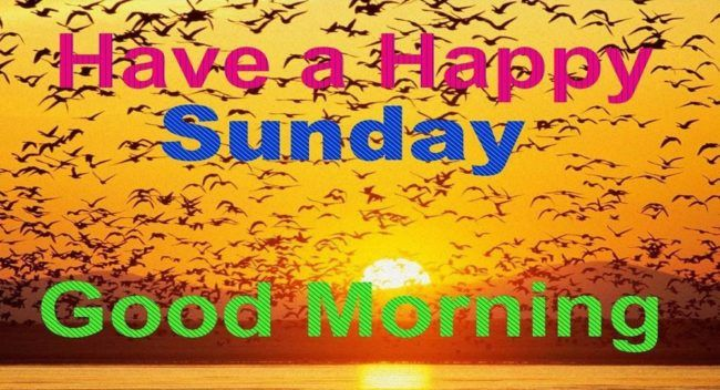 #SundayGoodMorning #Wallpapers #WhatsappFriends #Pictures #Photos