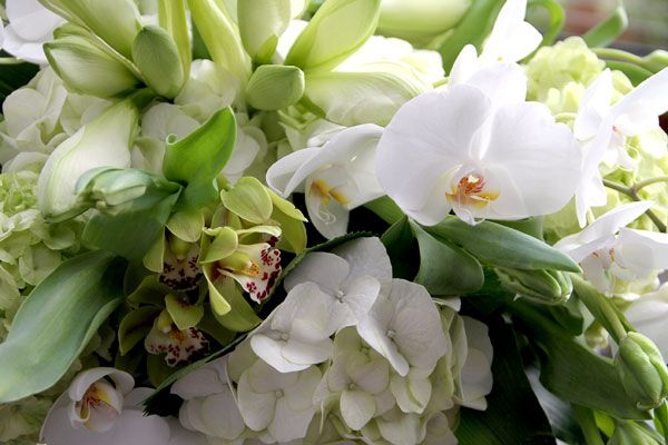 76 best images about white green weddings on pinterest for Bouquet de fleurs wine