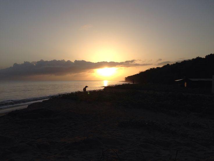 Zonsopgang Matapica strand waar schildpadden hun eieren leggen. Geweldige ervaring
