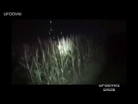 UFO OVNI: MISTERIOSAS LUZES É AVISTADA POR JOVEM EM PLANTAÇÃO NA POLÔNIA
