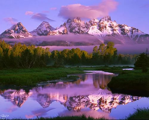 Photo of reflected beauty