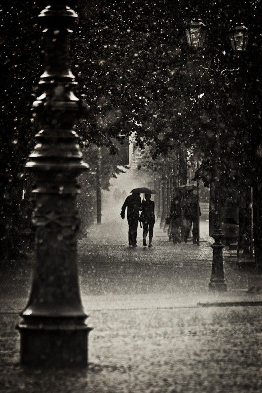 ♥Photos, Walks, Umbrellas, Rainy Day, Romances, Black And White, Beautiful, Black White, Photography