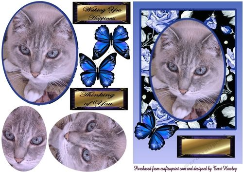 sweet little blue eyes 3D decoupage card front can be used for many reasons, has a couple of labels, Thinking of you, and wishing you Happiness, but then you can use your own. Very easy to make and anyone that likes cats would love this card.