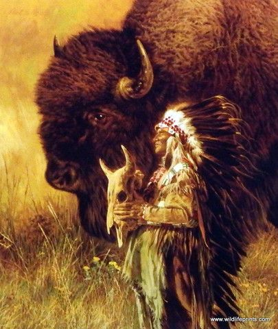 """A massive bison is standing next to the Chief who is holding the skull of a dead animal in Paul Calle's Spirit of Tatanka. This print is available unframed in size 9.25""""x10.75"""""""