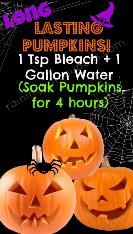 How to Easily Make your Carved Pumpkins Last WAY Longer! - Raining Hot Coupons