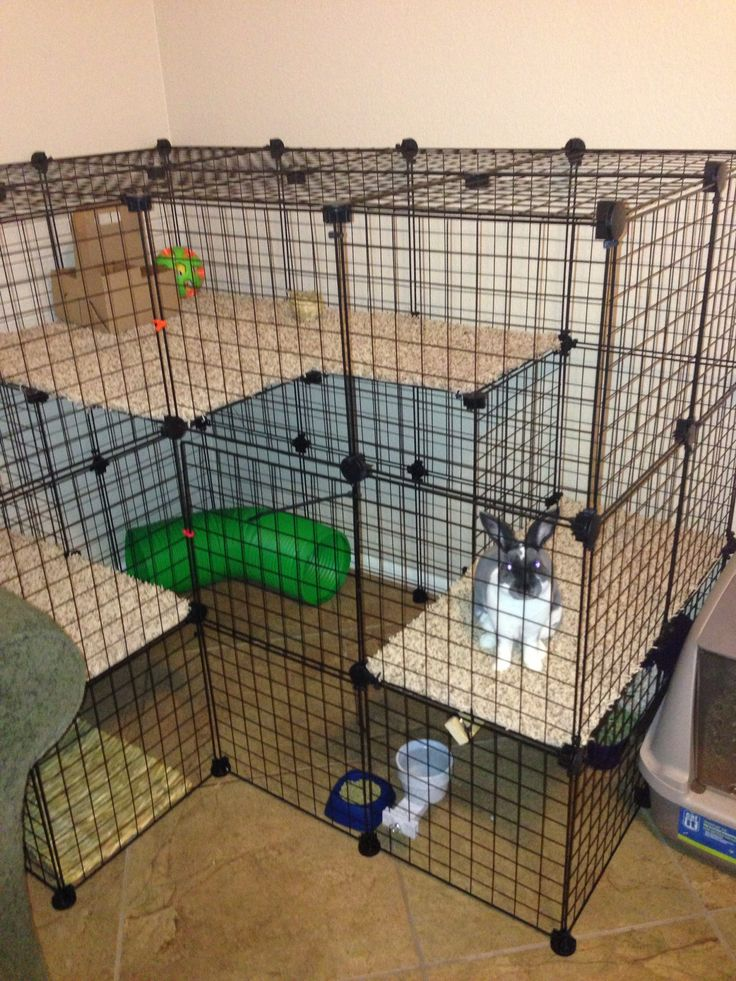 17 best ideas about rabbit cages on pinterest bunny hutch indoor rabbit house and rabbit ideas - How to make a rabbit cage ...