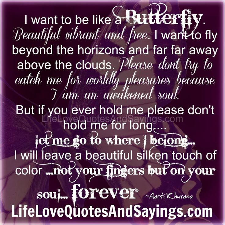 butterfly sayings and quotes | Butterfly Love Quote | Love Quote Image