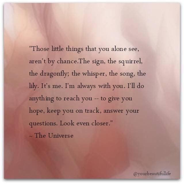 Those little things that you alone see, aren't by chance. The sign, the squirrel, the dragonfly, the whisper, th song, the lily. It's me. I'm always with you. I'll do anything to reach you--to give you hope, keep you on the right track, answer your questions. Look even closer. --The Universe