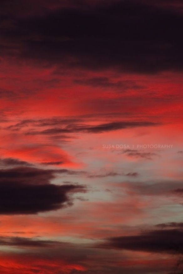 Dramatic Sky: dark tones, moody image, evening, artful 5472px X 3648px at 300Dpi  FOR BOOK COVER - AUDIO BOOK - E BOOK - PRINTED BOOK  COPYRIGHT note and License - Please read! One time fee - non exclusive license for book cover design. Name of person who owns the copyright to this image: Susa Dosa