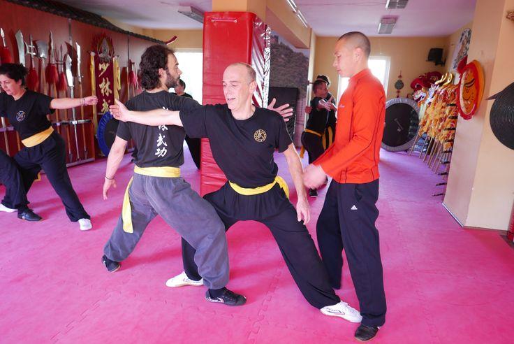 Learn Mei Hua Quan and longevity exercises with Shifu Shi Yan Jun in Shaolin Temple. kungfushaolins.com