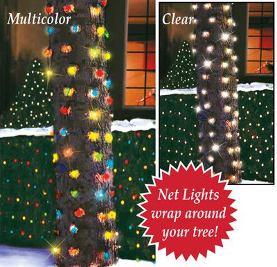 Outdoor Christmas Tree Trunk Lights #0: 538be a051a5b7e16e509a06de39 outdoor christmas trees christmas lights