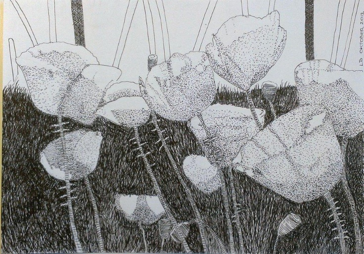 Poppies. October, 2012. Indian ink on paper. A4
