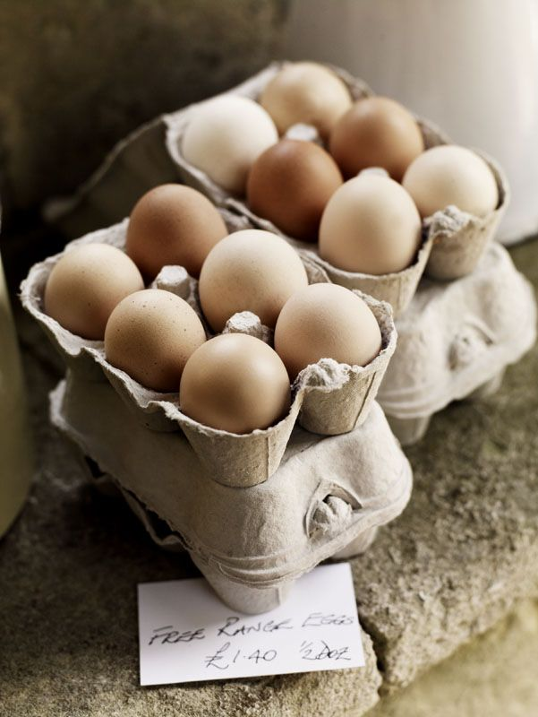 This is how to get a smaller carton! Good thinking! Chickens, hobby farming, DIY