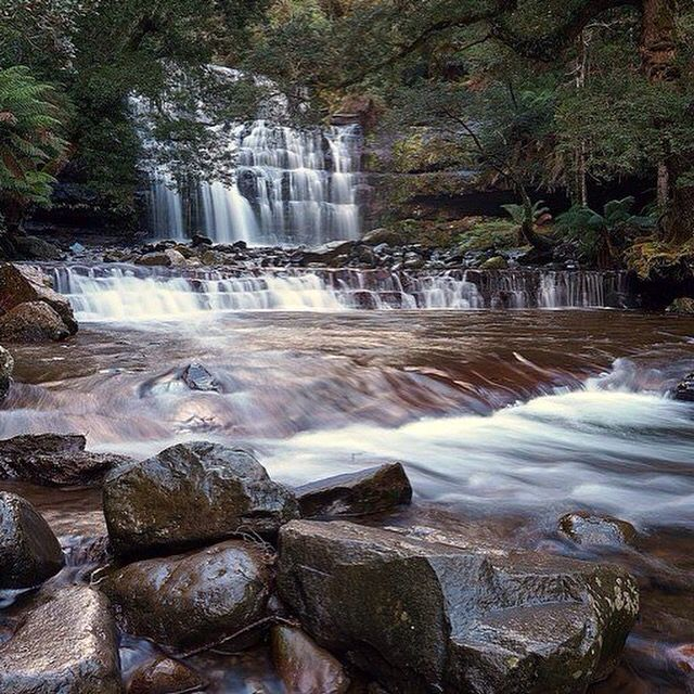 Liffey Falls, Bracknell Tasmania