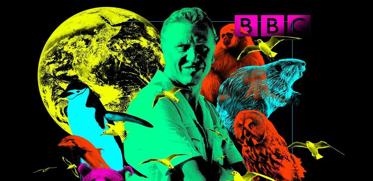 """The best of many of David Attenborough's """"Life"""" tv series on Life on Earth."""