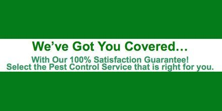 Household #Insects - Call Jax Pest Control to eliminate them (904) 289-2800 https://t.co/xz9qWEF0vK
