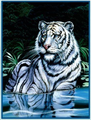 """Royal Plush Extra Heavy Queen Size Mink Blanket - River Tiger (79"""" x 85"""")"""