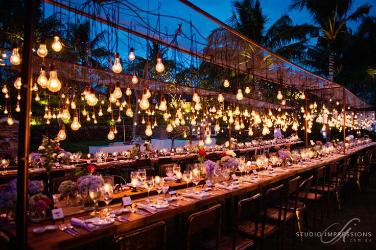 OPTION 1 - Suspended light bulbs at an outdoor reception.  This setting should not be expensive.