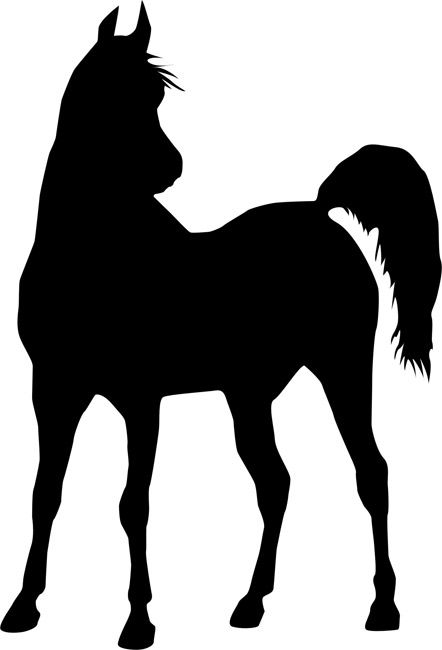 Quickly and easily create a beautiful and unique design anywhere you desire with our Alert Horse Painting Stencil!