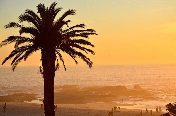 Thinking of taking your honeymoon in South Africa? Check out these 7 top reasons why you should.