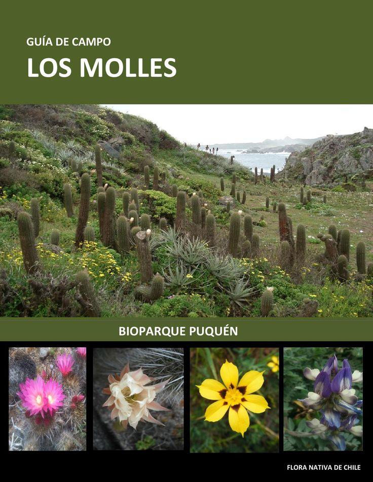 Guia de Campo Los Molles  Flora Nativa de Chile - Guia de Campo, realizada por…